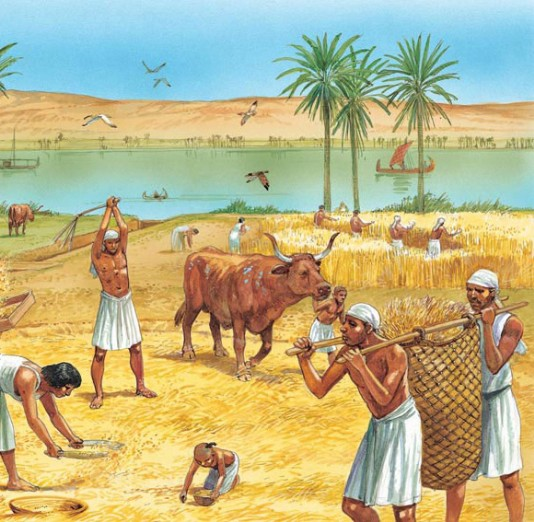 Farming in ancient Egypt - Q-files - Search • Read • Discover